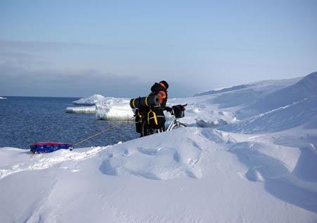 Marin на берегу Ледовитого океана