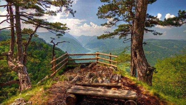 Tara-national-park-view.jpg