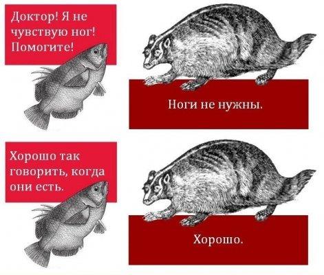 ноги-комикс-рыба-енот-478428.jpeg