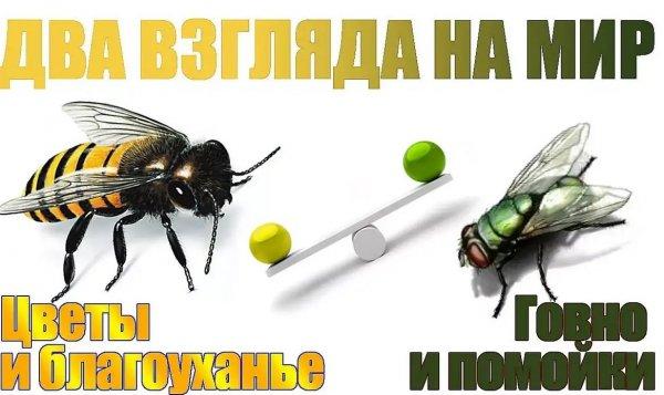 IMG_20200728_130139.jpg